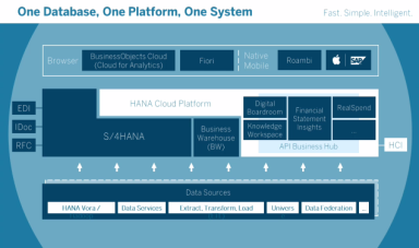 SAP HANA platform.PNG